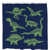 Know Your DinosShower Curtain